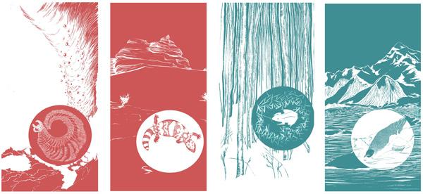 Ailish Sullivan (American Illustrator) - Art Inspired by Science + Culture